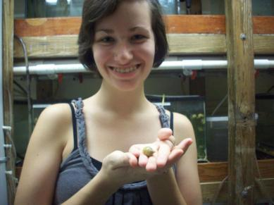 Holding my study organism for my undergrauate research, L. stagnalis.