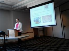 Presenting my undergraduate research at the 2013 ACC Meeting of the Minds.